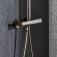 Grohe Euphoria XXL - Duschsystem 310 mit Thermostat hard graphite environmental 6