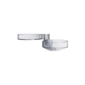 Hansgrohe Cassetta'D - Soap Dish clear